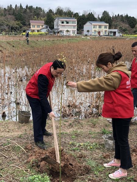 志愿者们首先参观了解了白鹤村鹤林绿洲的建设和运行情况,了解到